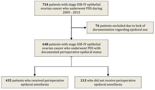 Perioperative Epidural Use And Survival Outcomes In Patients Undergoing Primary Debulking Surgery For Advanced Ovarian Cancer Sciencedirect