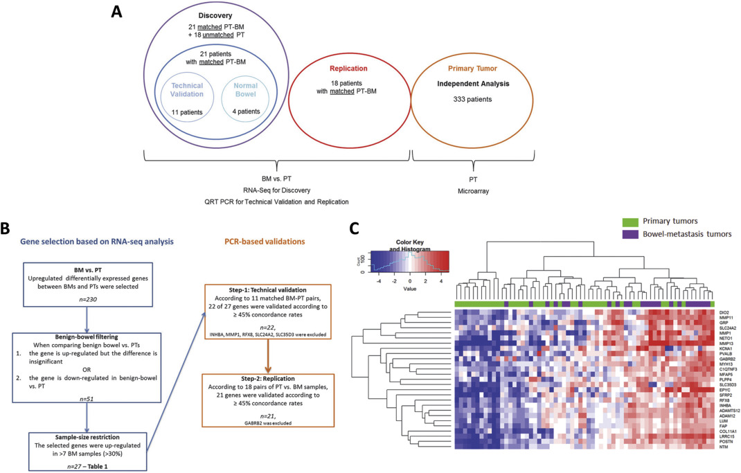 Genes associated with bowel metastases in ovarian cancer - ScienceDirect