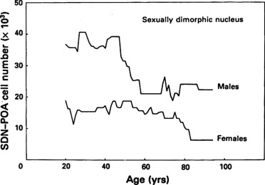 Sexual differentiation of the human brain: Relation to