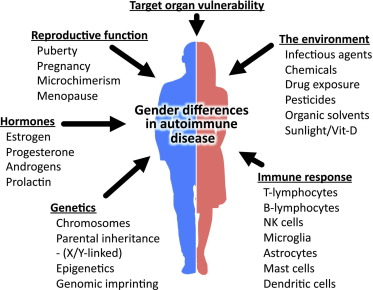 gender differences in autoimmune disease - sciencedirect, Skeleton