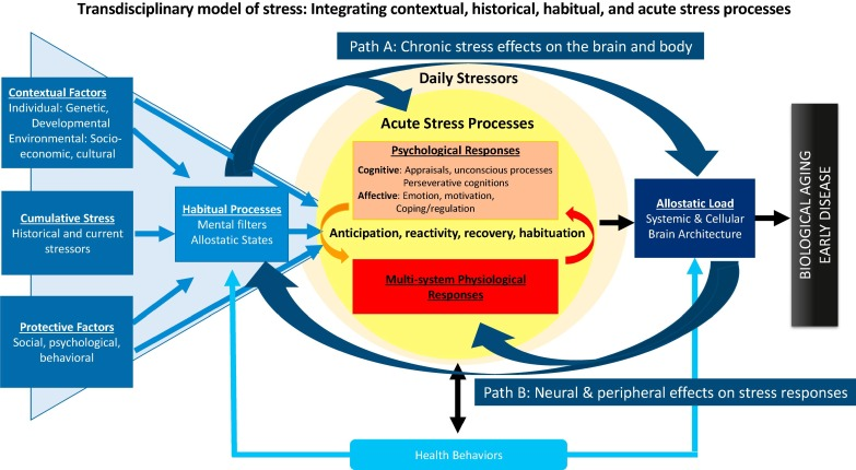 Economic Stress Linked To Poor Brain >> More Than A Feeling A Unified View Of Stress Measurement
