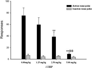 Levo-tetrahydropalmatine, a natural, mixed dopamine receptor
