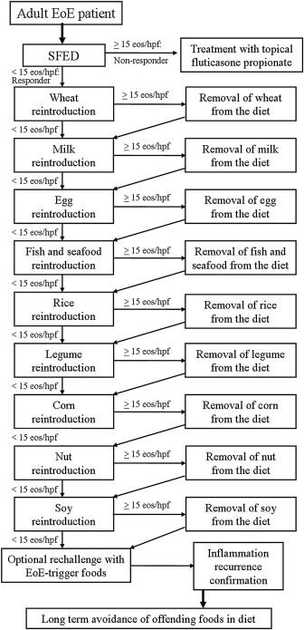 eoe 6 food elimination diet