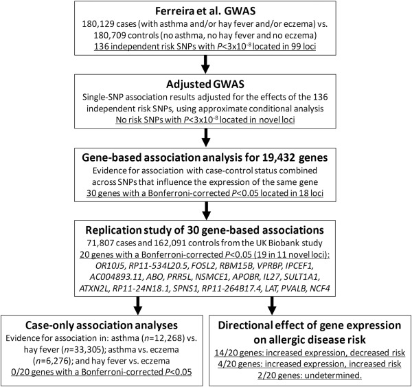 Eleven loci with new reproducible genetic associations with