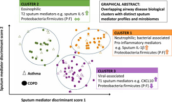 Biological exacerbation clusters demonstrate asthma and chronic