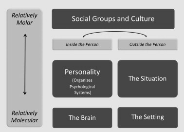 according to traditional behaviorism personality is