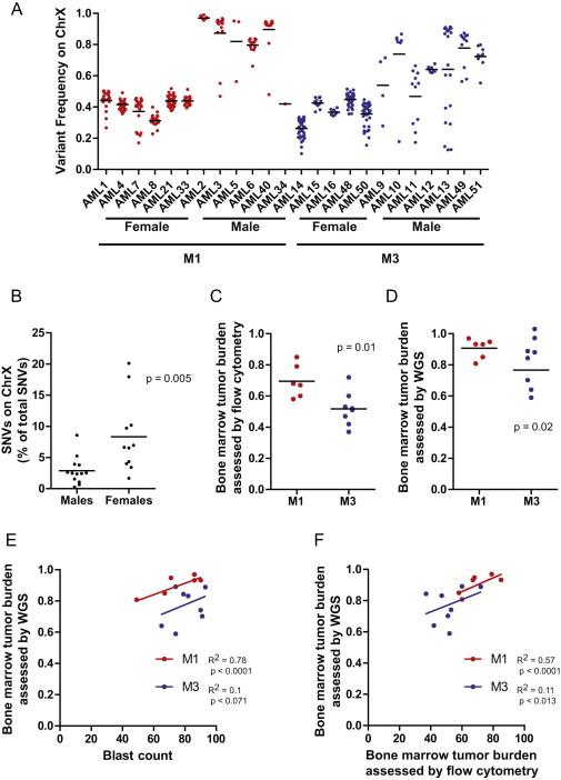 The Origin and Evolution of Mutations in Acute Myeloid Leukemia