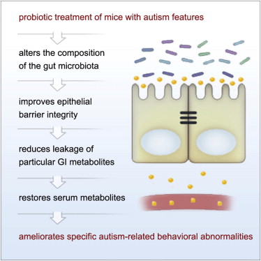 Autism Not Only Neurodevelopmental >> Microbiota Modulate Behavioral And Physiological