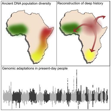 Reconstructing Prehistoric African Population Structure