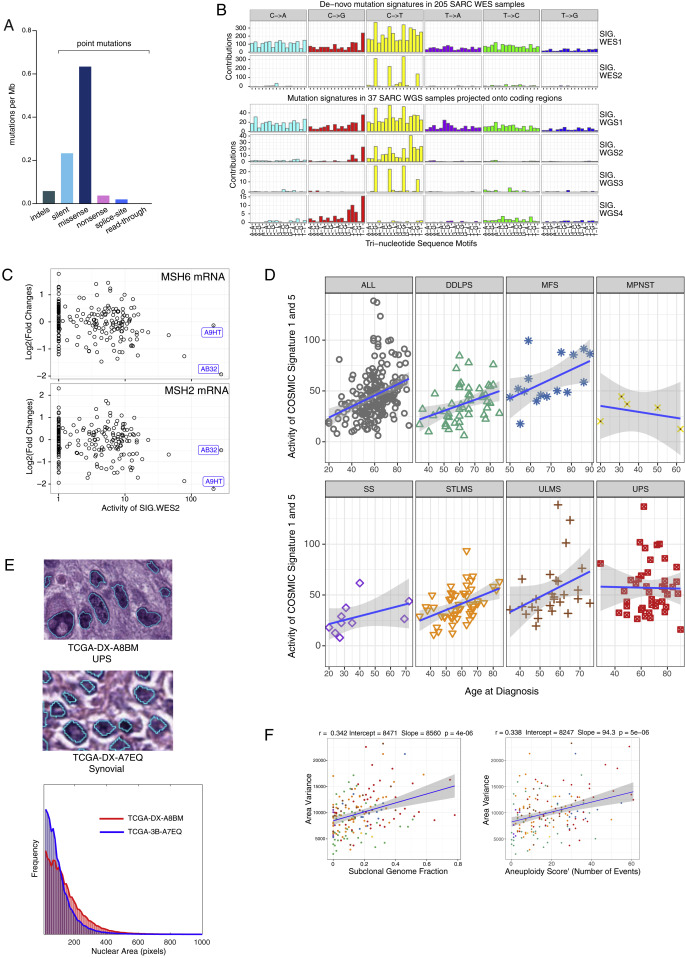 0c2f00cf1ee58 Comprehensive and Integrated Genomic Characterization of Adult Soft ...