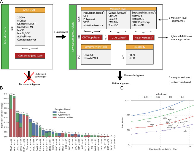 Comprehensive Characterization of Cancer Driver Genes and