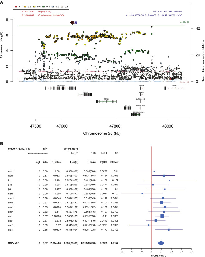 Genomic Dissection of Bipolar Disorder and Schizophrenia