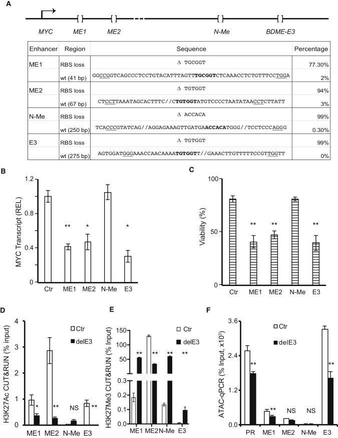CBFβ-SMMHC Inhibition Triggers Apoptosis by Disrupting MYC