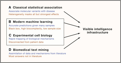 Visible Machine Learning for Biomedicine - ScienceDirect