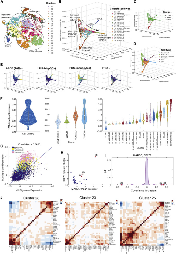 Single-Cell Map of Diverse Immune Phenotypes in the Breast Tumor