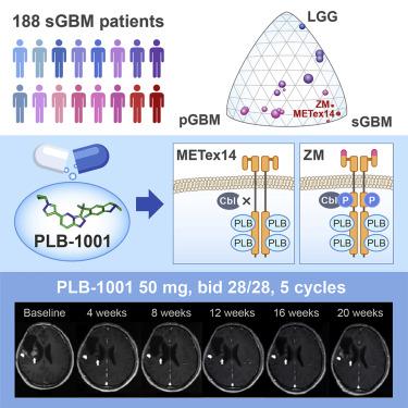 Mutational Landscape of Secondary Glioblastoma Guides MET