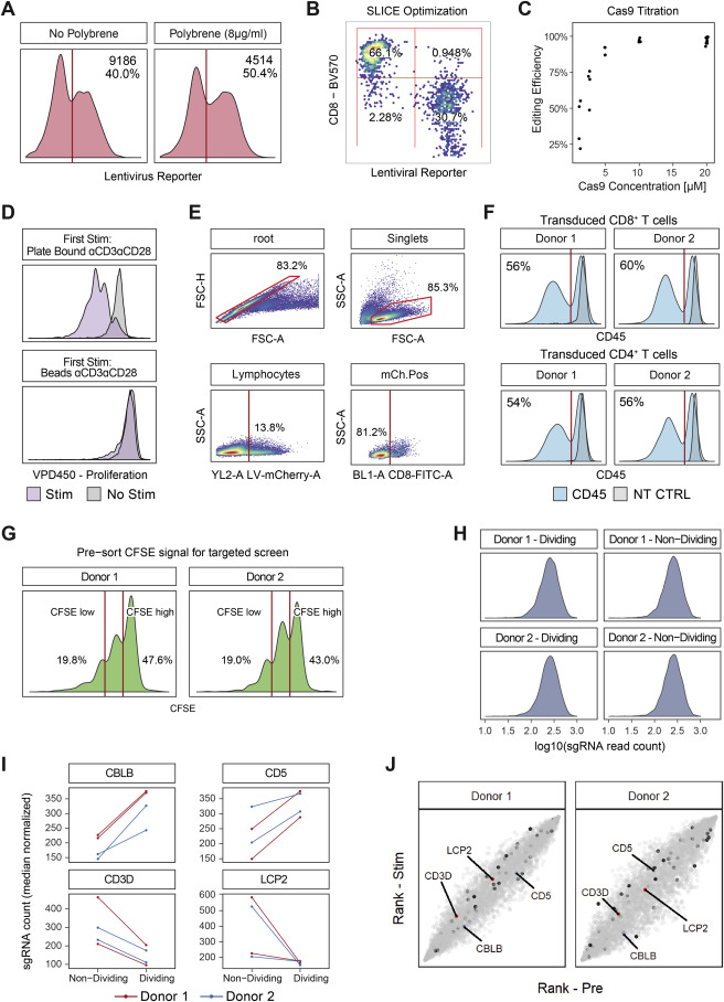 Genome-wide CRISPR Screens in Primary Human T Cells Reveal