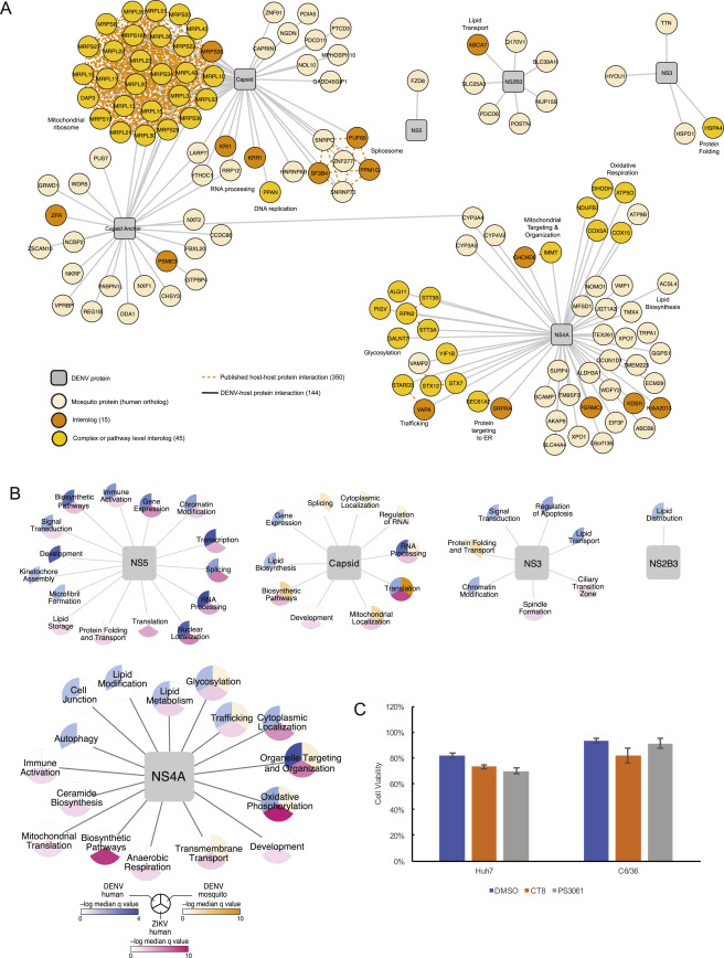 Comparative Flavivirus-Host Protein Interaction Mapping