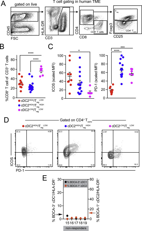 Unleashing Type-2 Dendritic Cells to Drive Protective Antitumor CD4+