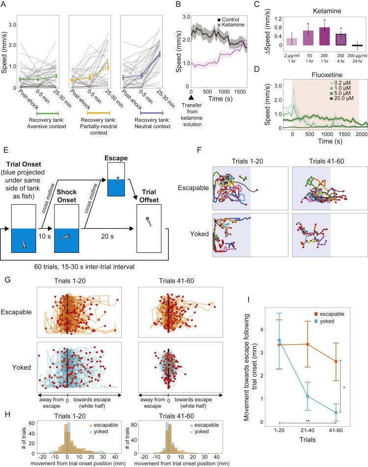Neuronal Dynamics Regulating Brain and Behavioral State
