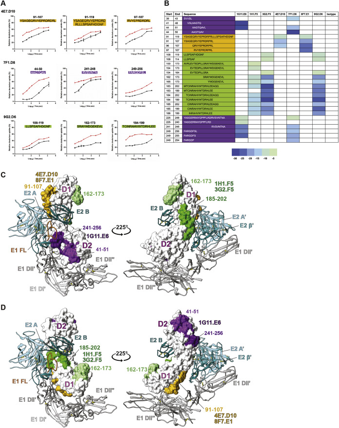 Cryo-EM Structure of Chikungunya Virus in Complex with the Mxra8