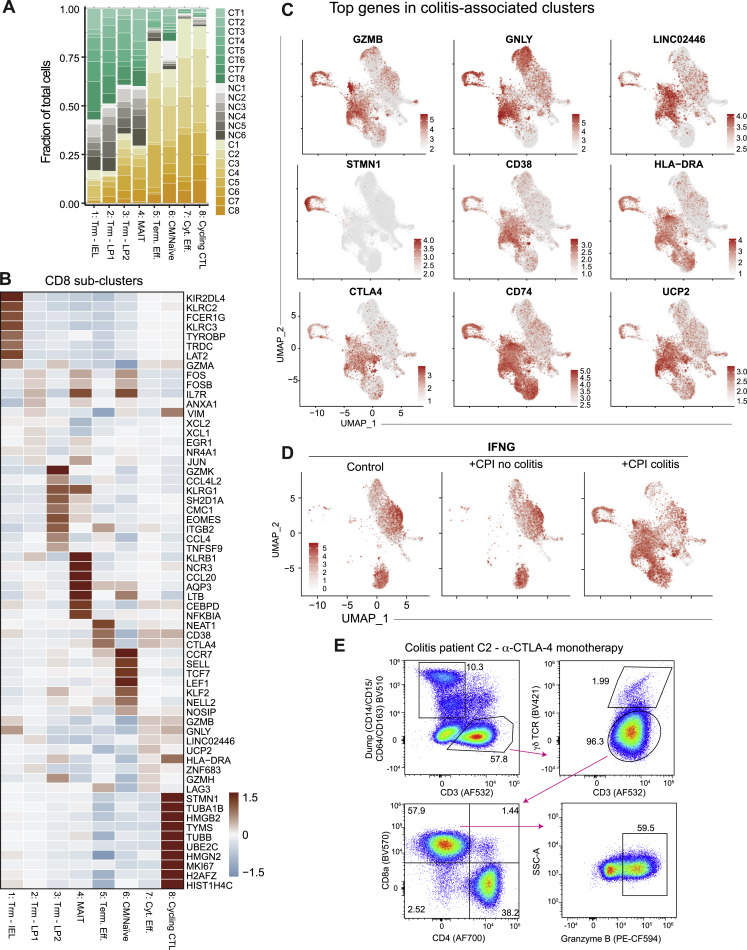 Molecular Pathways Of Colon Inflammation Induced By Cancer Immunotherapy Sciencedirect