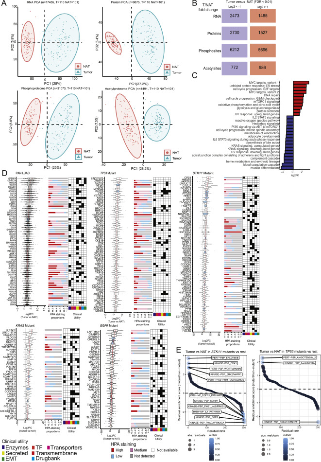 proteogenomic characterization reveals