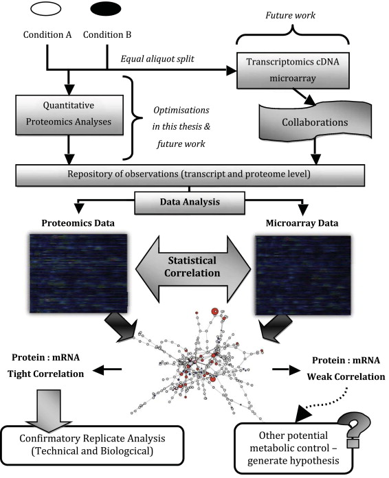 A Review Of Current Proteomics Technologies With A Survey On Their