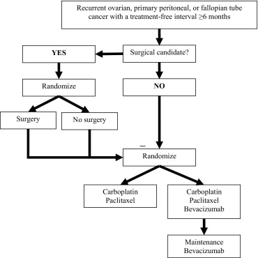 Surgical Management Of Recurrent Ovarian Cancer Sciencedirect