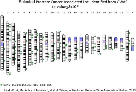 cancer prostate familial