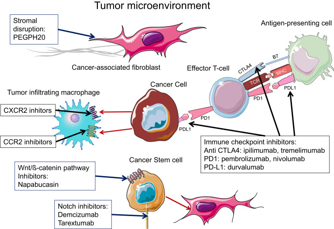 Systemic treatment of pancreatic cancer revisited
