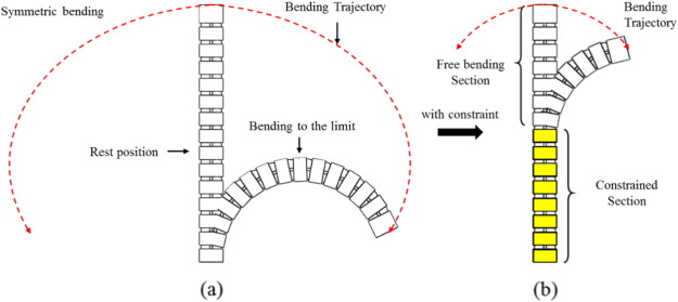 A novel constrained wire-driven flexible mechanism and its kinematic ...