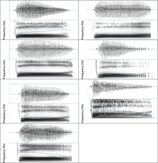 an acoustic and electroglottographic study of white hmong tone and