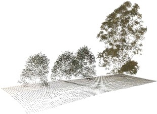 Efficient tree modeling from airborne LiDAR point clouds - ScienceDirect
