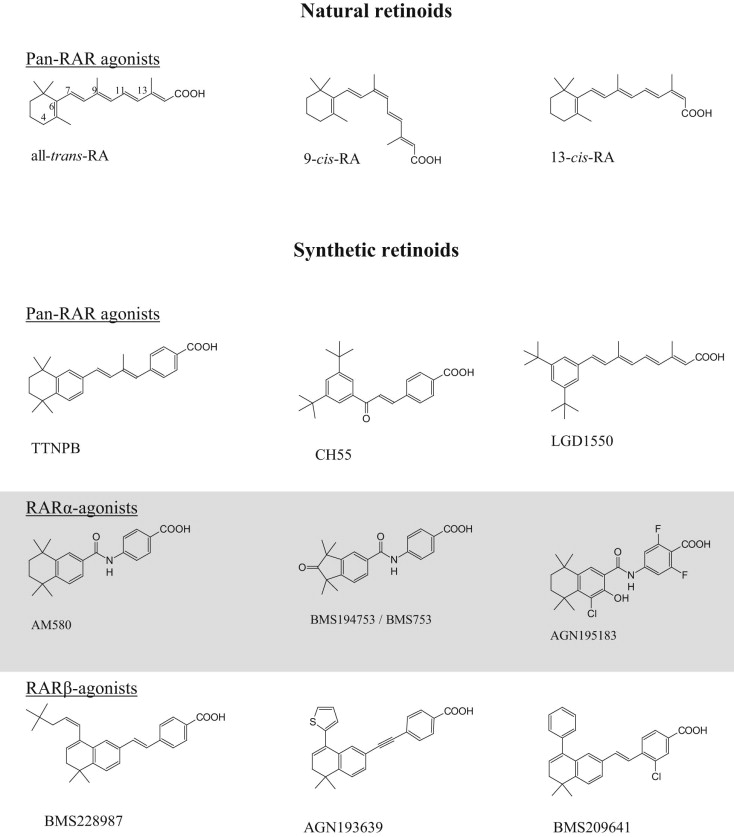 Mechanisms Acid Retinoic To Cancer Molecular Therapy ReceptorsFrom lJTF1cK