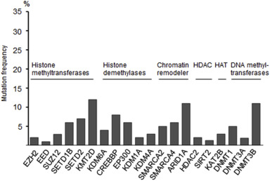 DNA methylation and chromatin modifiers in colorectal cancer