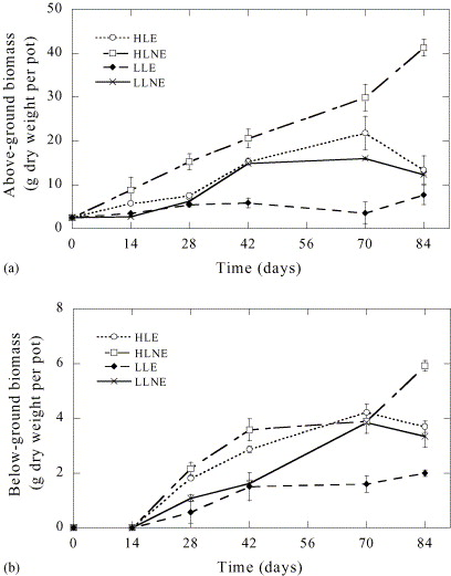 The Effect Of Epiphytic Algae On The Growth And Production Of