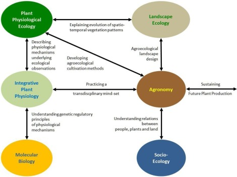 Linking Integrative Plant Physiology With Agronomy To Sustain Future Plant Production Sciencedirect