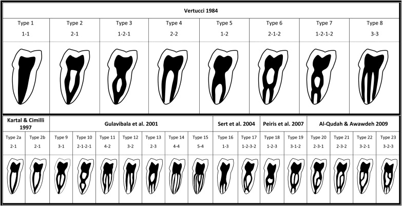 Root Anatomy And Canal Configuration Of The Permanent Mandibular