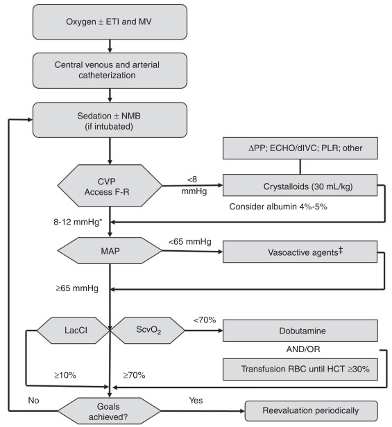 Current Concepts On Hemodynamic Support And Therapy In Septic Shock