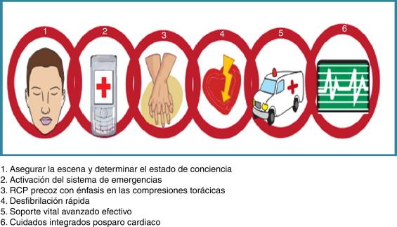 Vital pdf aha cardiovascular soporte avanzado