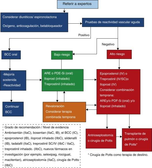 Hipertensión pulmonar etapa 1