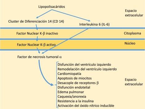 Pediatría en revisión hipertensión pulmonar