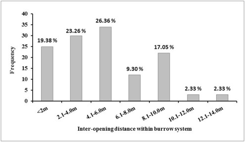 Burrow characteristics and its importance in occupancy of