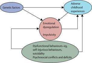 Borderline personality disorder - ScienceDirect