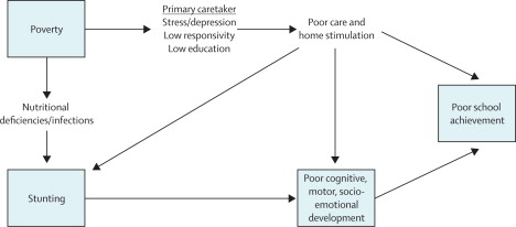 Developmental potential in the first 5 years for children in