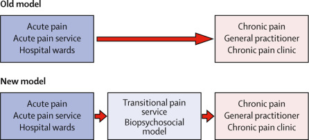 Transition from acute to chronic pain after surgery - ScienceDirect