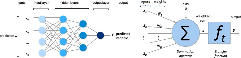 Artificial neural networks for the interpretation of piezometric