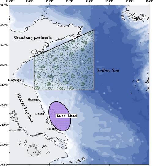 A review of the green tides in the yellow sea china sciencedirect the sketch map of green tide in the yellow sea purple area is the subei shoal where were used for p yezoensis aquaculture the trapezoidal area is the gumiabroncs Choice Image