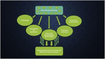 Biosurfactant Induced Remediation Of Contaminated Marine
